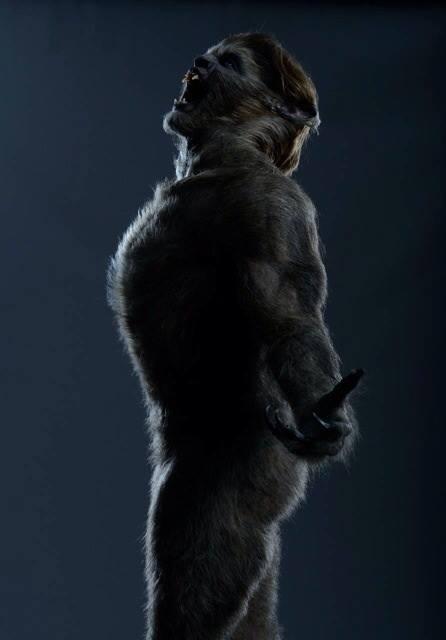 Merritt patterson nude wolves 2014 3